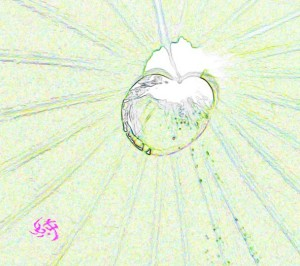 水滴art