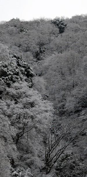峠の雪景色